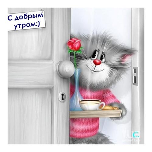 Пожелания доброго утра в открытках с юмором 66
